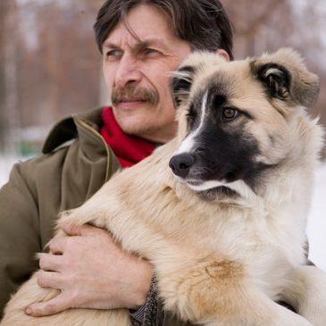 Warum ähneln sich Hund und Mensch?