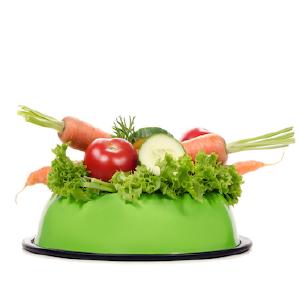 Futter-Verträglichkeit – Test